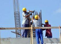 case constructii schela