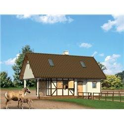 Proiect Casa - 8741