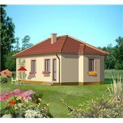 Proiect Casa - 1919