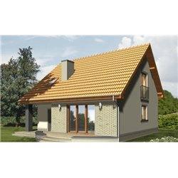 Proiect Casa - 1991