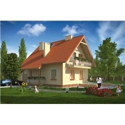 Proiect Casa - 2041