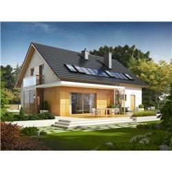 Proiect Casa - 9950