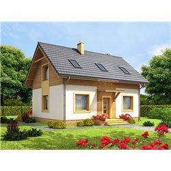 Proiect Casa - 7038