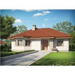 Proiect Casa - 5295