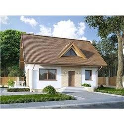 Proiect Casa - 5411